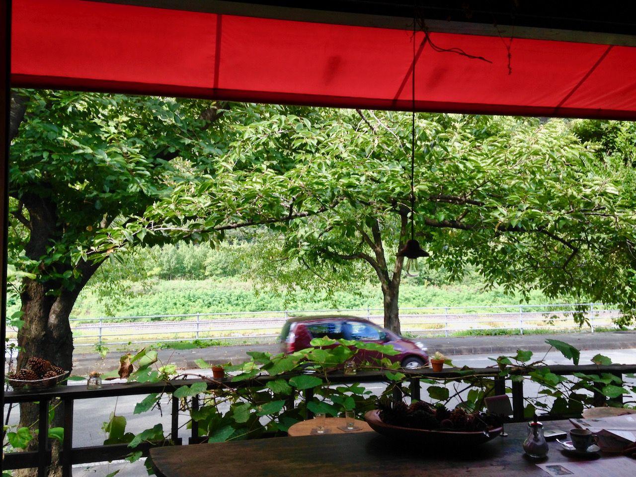 緑濃い季節には冷たいカフェラテが美味しい