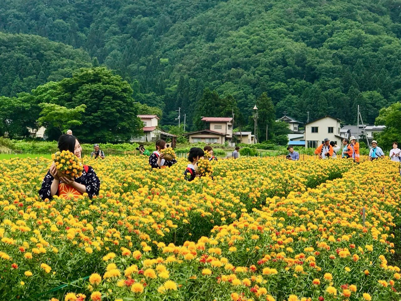 2.山寺と山形紅花まつり/山形県