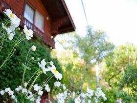 山形蔵王 ペンション「エプロンステージ」花と緑の上品なお宿