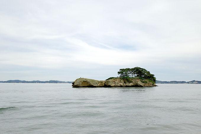 爽快!塩釜発着の松島湾クルーズがおすすめ