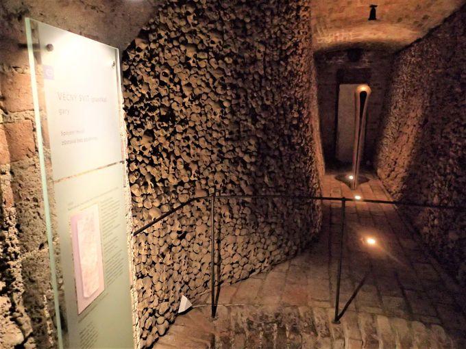 壁に並ぶ遺骨……その荘厳で神秘的な光景