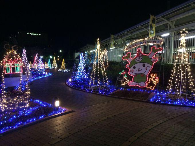 クリスマスには光がいっぱい