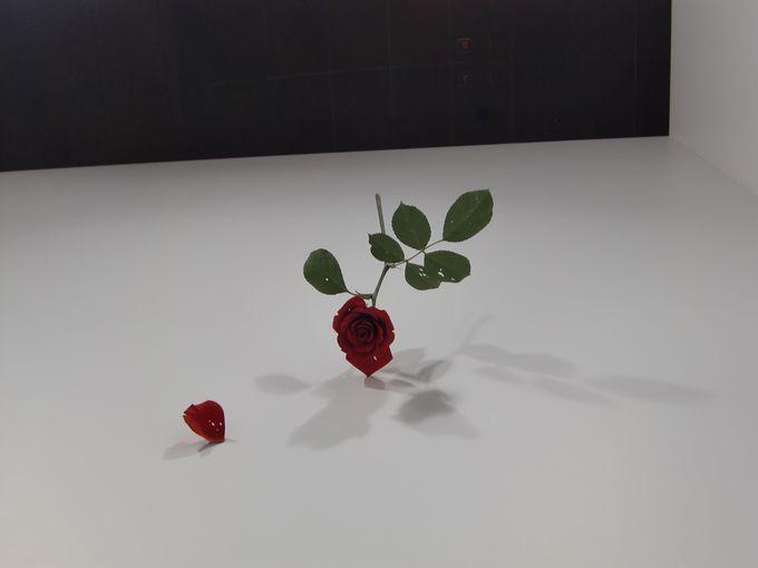 繊細な花が場を変える