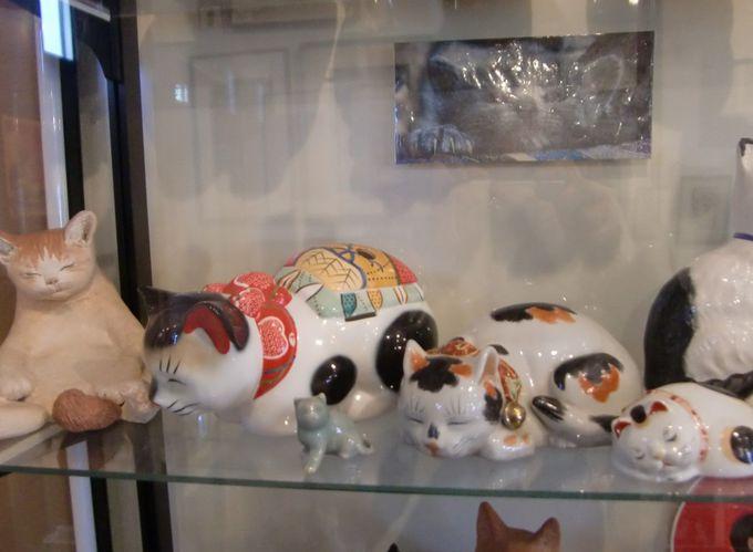 個性的な猫たち