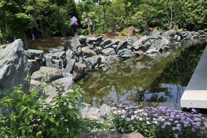 池と築山に囲まれて