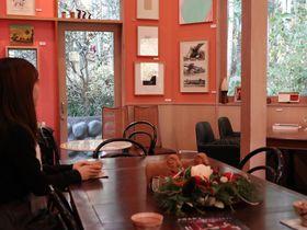 横須賀「カスヤの森現代美術館」でアートに出会い、竹林に憩う!