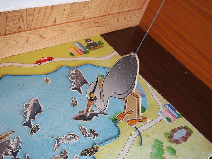 遊びながら学ぼう!「島根県立宍道湖自然館ゴビウス」
