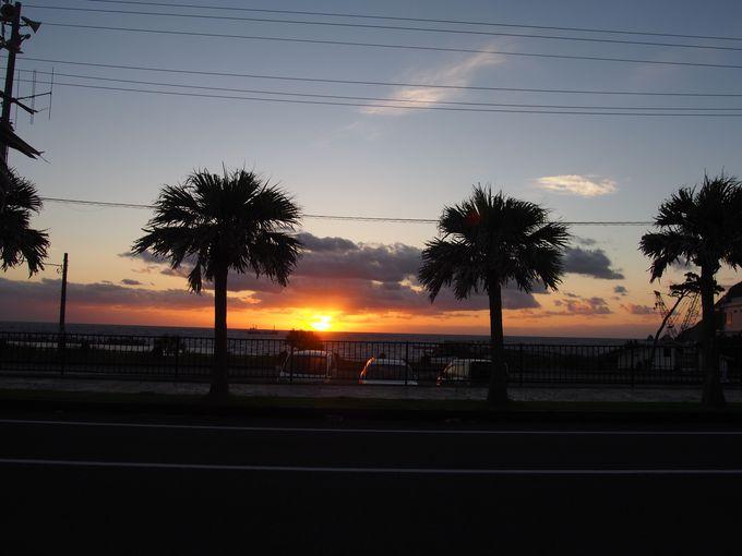 八丈島の朝を楽しむ