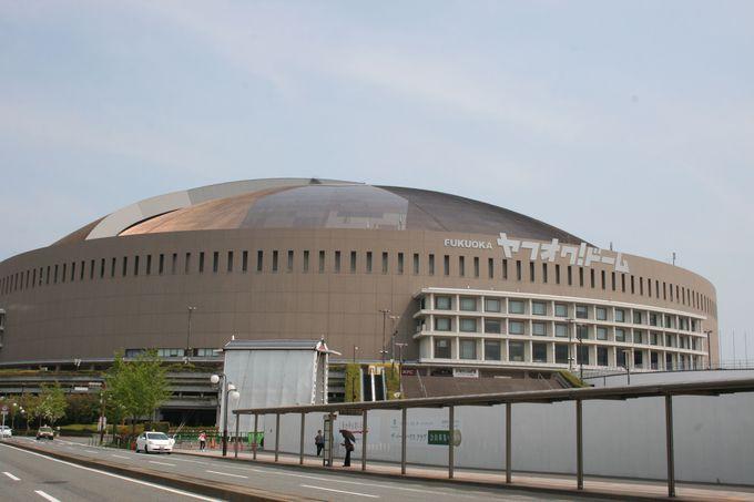 周辺エリアは福岡市内でも人気の観光スポットが盛りだくさん