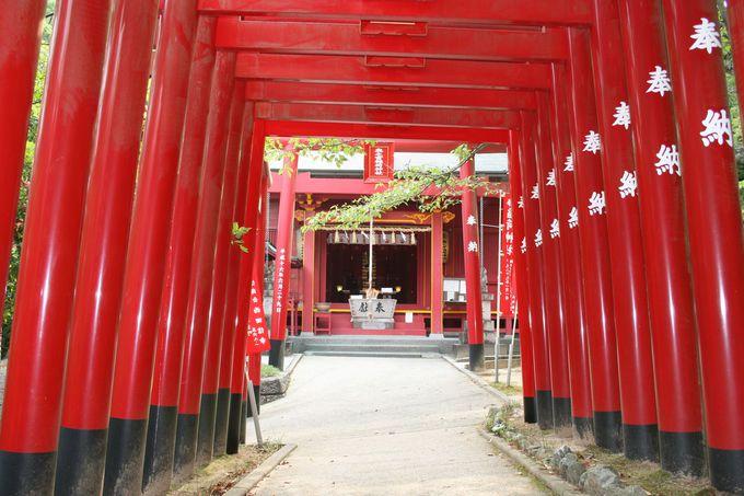 本殿の横から入る「奥之宮八社」はパワースポットとして人気