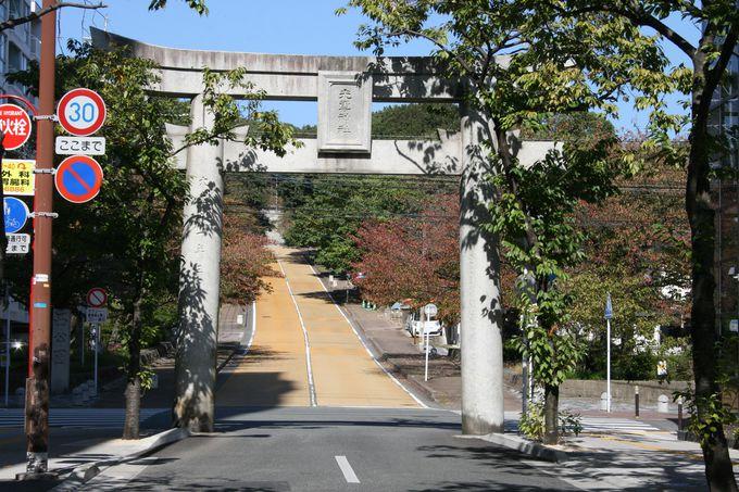 福岡市民でも知らない人が多い「光雲神社」