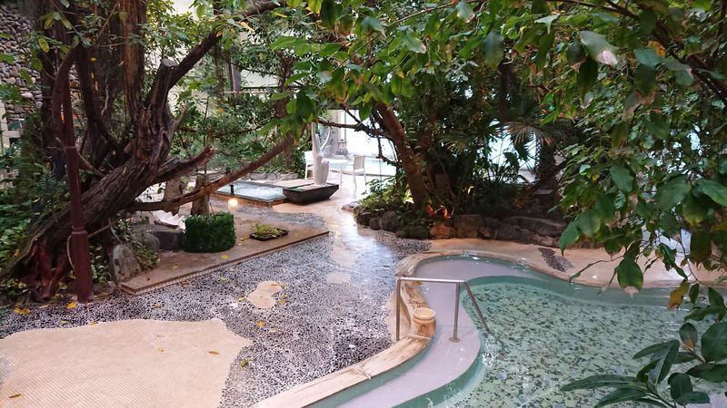ジャングル風呂とW美肌の湯が大人気!福岡朝倉市「原鶴温泉 泰泉閣」