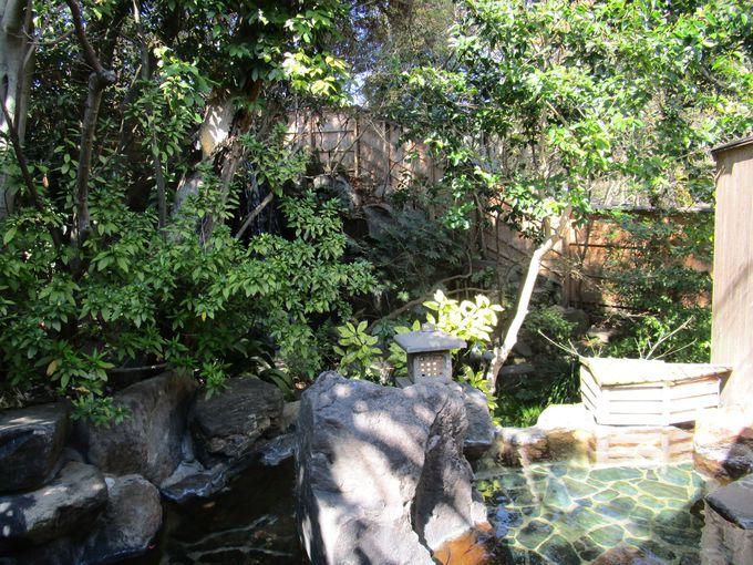 ジャングル風呂と自家源泉のW美肌の湯が人気!