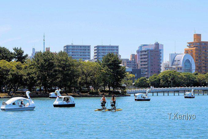 大濠公園は日中もおすすめ。市民や観光客の憩いの場!