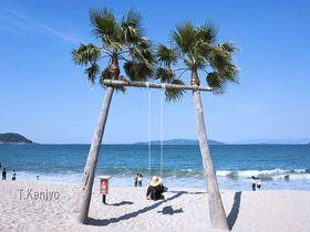 糸島のビーチや海が楽しめるスポット7選