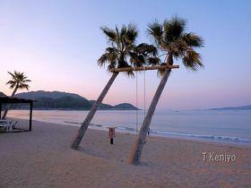 まるで南国の海!福岡・糸島「ヤシの木ブランコ」はオシャレ写真スポット