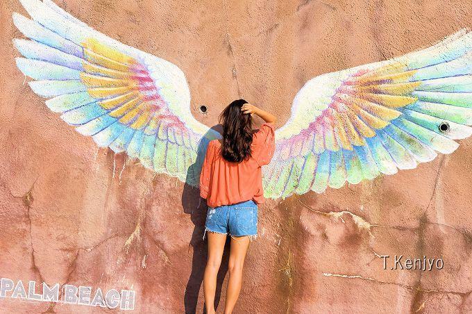 「天使の羽」は午後がおすすめ!