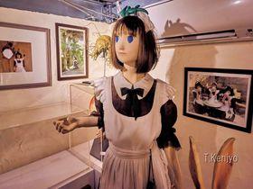 福岡最強の珍スポット?「不思議博物館」はマニアック過ぎる空想世界