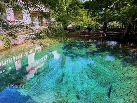 山口県「別府弁天池」は神秘的過ぎるコバルトブルーの泉!