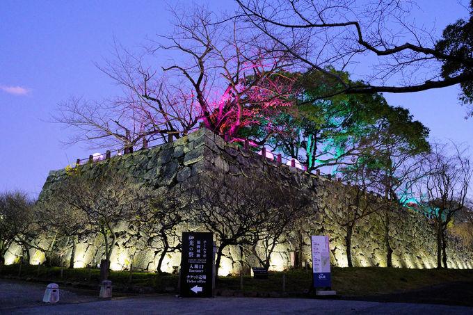 「チームラボ 福岡城跡 光の祭 2019-2020」って、どんな展覧会?