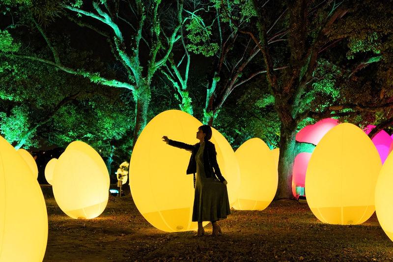 「チームラボ 福岡城跡 光の祭 2019-2020」今注目!冬アート展が開催