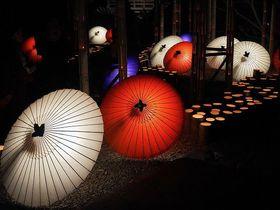 「山鹿灯籠浪漫・百華百彩 2019」熊本の冬の祭典が開催