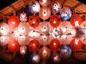 「山鹿灯籠浪漫・百華百彩2020」夜灯りに包まれた熊本の冬の祭典