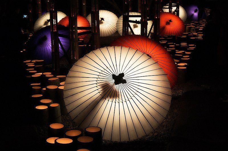 フォトジェニック!「金剛乗寺」の和傘と竹のコラボ
