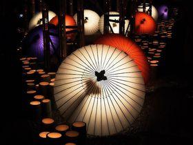 熊本「山鹿灯籠浪漫・百華百彩」夜灯りに包まれた冬の祭典