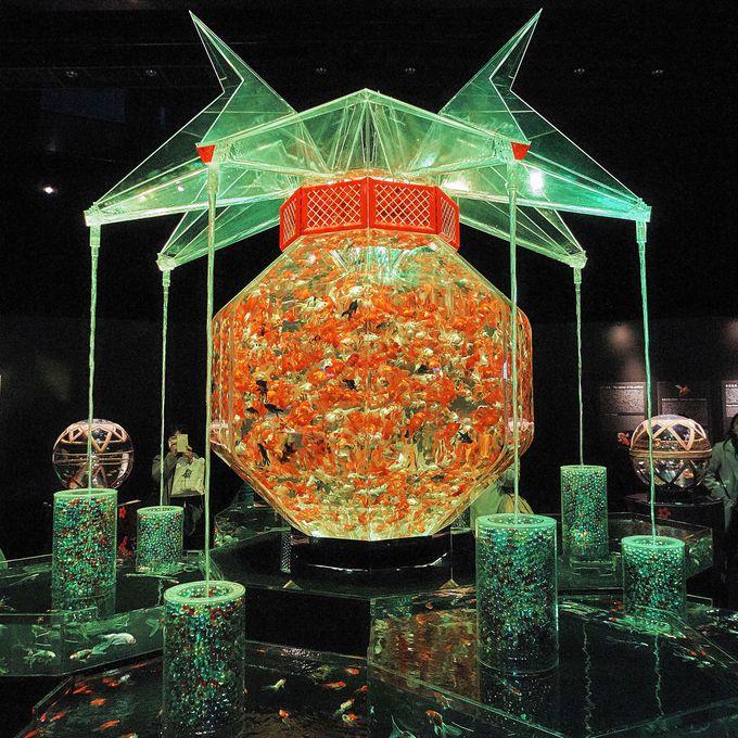 3000匹の金魚が乱舞!「アートアクアリウム展」を代表する作品