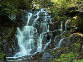 糸島「白糸の滝」は福岡の夏の風物詩!ヒンヤリ涼を求めに行こう