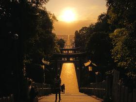 嵐CMの絶景!福岡・宮地嶽神社「光の道」2021春の見頃は?