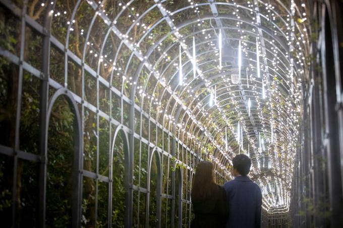 19時〜「白銀の世界」&「パレス ハウステンボス」。まさに光の芸術!