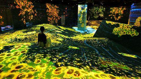 福岡「チームラボフォレスト」がリニューアル!デジタルの森で学び遊ぼう