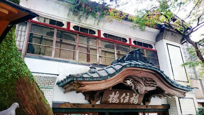 箱根塔之沢温泉を明治から見守ってきた福住楼