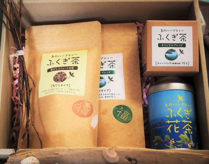 隠岐のハーブティーと呼ばれる「ふくぎ茶」(海士町)