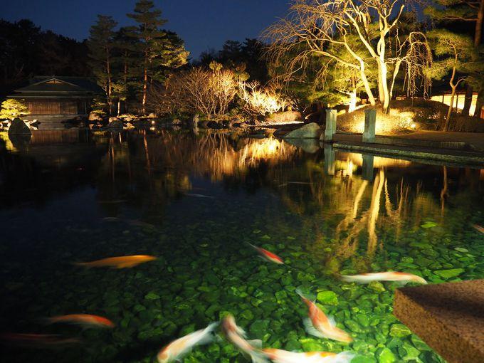京都迎賓館の一般公開・夜間延長公開に行くには?