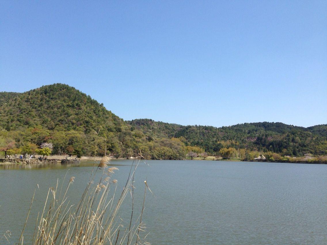 広大な寺領を持つ遍照寺の一部だった広沢池