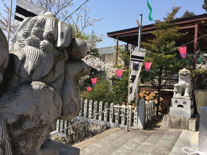 神社の名物!「子取り狛犬」