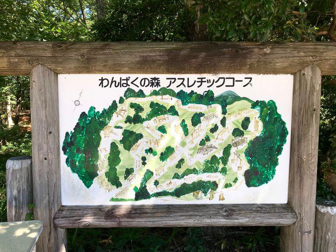 何度もチャレンジしたい「わんぱくの森」アスレチックコース