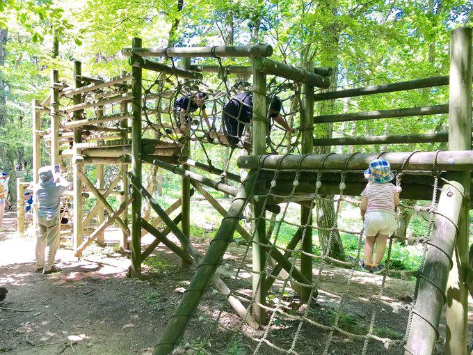 アスレチックコースに挑戦!広島「もみのき森林公園・わんぱくの森」