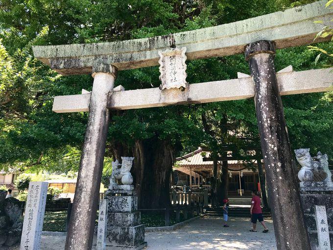 平安時代に創建された「筒賀大歳神社」