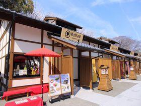 名古屋城「金シャチ横丁」義直ゾーンでなごやめしを堪能