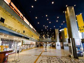 ル・コルビュジエの弟子・前川國男の名建築、上野「東京文化会館」「東京都美術館」を味わう