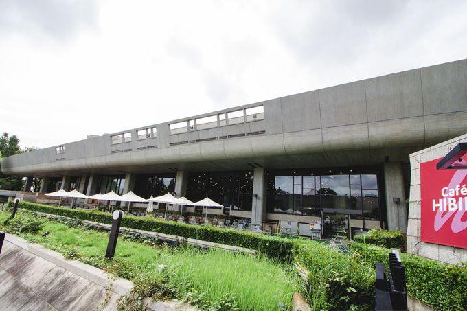 5.cafe HIBIKI