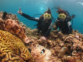 透明度抜群の沖縄の海「青の洞窟」でダイビング!日常生活から離れた不思議な体験をしてみよう!