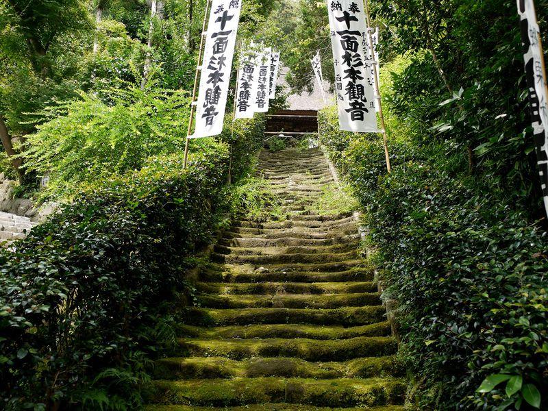 苔むした階段が美しい…!