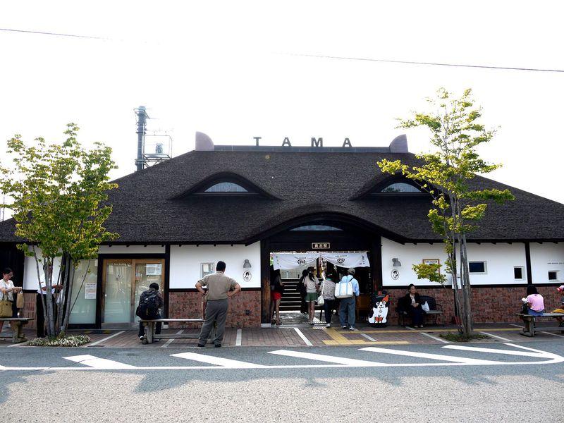 日本一有名な猫?!「ウルトラ駅長たま」に会いにたま電車に乗って貴志駅に行ってみよう!