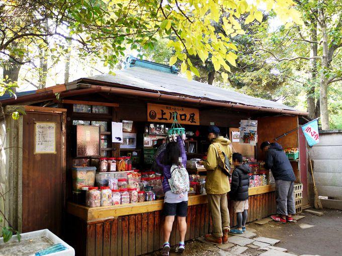 日本最古の駄菓子屋さん