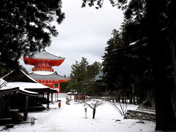 高野山二大聖地の一つ「壇上伽藍」